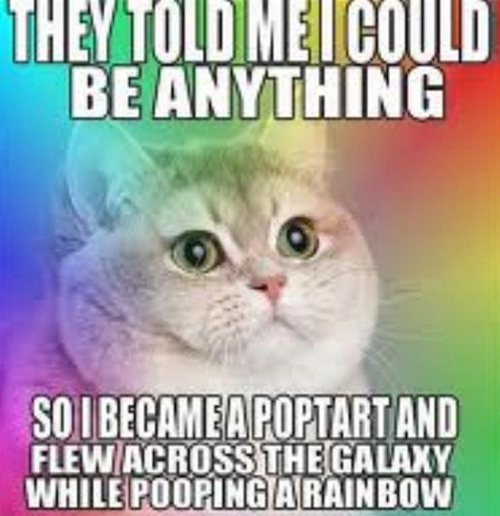 They told me I could be anything so I became a poptart and flew across the galaxy while pooping a rainbow