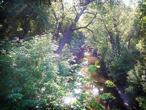 Minehaha Creek by nullrend